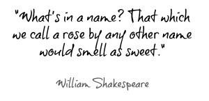 William Shakespeare Quotes Romeo And Juliet (6)