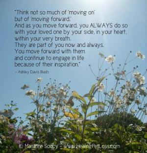 life love pet heaven earth grief love tears healing best friends pets ...