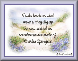 Trials ~ Quote Tag