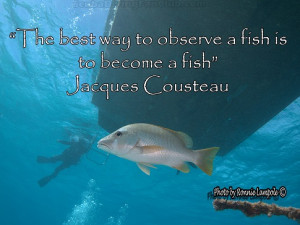 Some scuba diving quotes for you to share. On the left side of the ...
