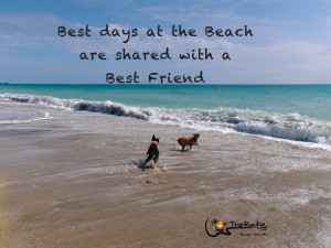 Best days at the Beach are shared with a Best Friend. Beach Quote.