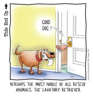 Totally Random Tuesday V – 20 Insanely Funny Images