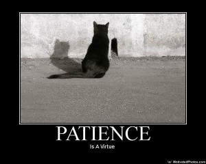 PATIENCE !!!