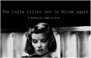 Recherches associées à katharine hepburn quotes calla lilies