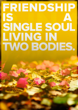 Friendship Is a Single Soul Living in Two Bodies ~ Friendship Quote