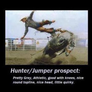 Hunter/Jumper prospect