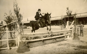 Show Jumping Quotes. All Unknown Quotes. View Original . [Updated on ...