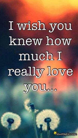 Wish You Knew How Much I Really Love You!