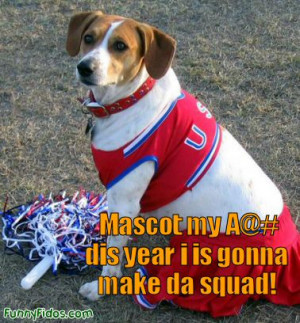 Related Pictures funny dog picture cheerleader