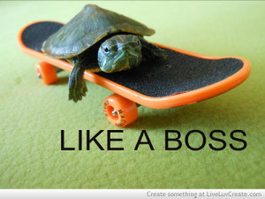 cute, like a boss, love, pretty, quote, quotes, skateboards, turtles