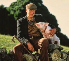 james cromwell babe 1995 laughing quotes stuff girly things pigs james ...