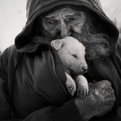 """Animal Quotes, Animal Rights & Religions photo: """"Compassion for ..."""