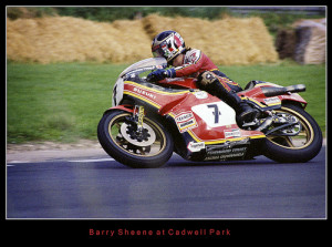Barry Sheene Tribute Suzuki