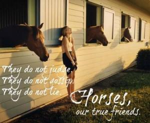 Horses are true friends