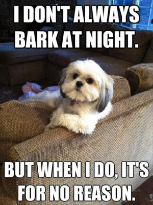 Shih Tzu Friday Quotes. QuotesGram