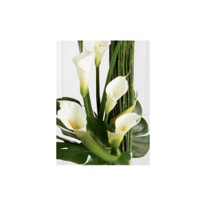 calla lily arrangement sophisticated white calla lilies are expertly ...
