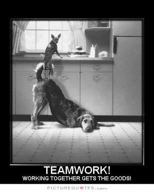 Teamwork Quotes Team Quotes Working Together Quotes