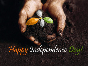 Independence Day Quotes And Sayings Independence Day Quotes