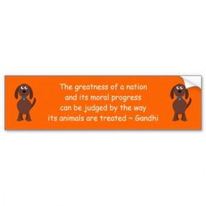 Gandhi Animal Rights Quote Cartoon Dog Orange Bumper Sticker From