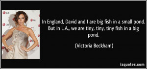 big fish in a small pond. But in L.A., we are tiny, tiny, tiny fish ...