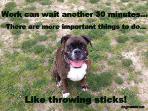 Work Can Wait Another 30 Minutes - Dog humor
