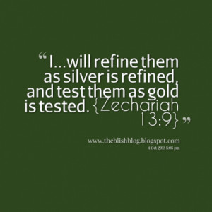 will refine them as silver is refined, and test them as gold is ...