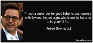 poster boy for good behavior and recovery in Hollywood, I'm just a guy ...