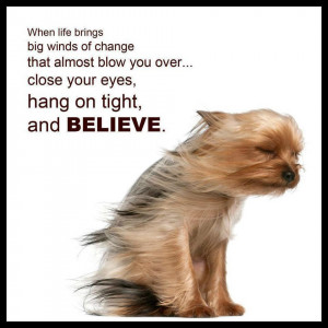 When Life Brings Big Winds of Change…..Believe