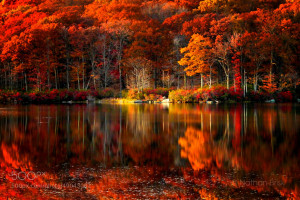 autumn reflections by nathan brisk on 500px.com