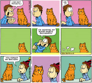 Garfield Minus Garfield Plus a Cat
