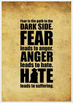 Fear is the path to the Dark Side. Fear leads to anger. Anger leads to ...