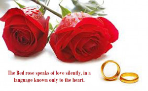 Latest Most Beautiful Red Rose Pictures with Romantic Love Quotes 2013