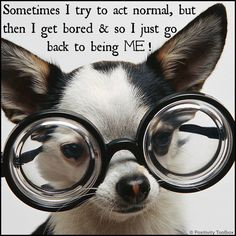 ... bored & so I just go back to being ME! From Positivity Toolbox #quotes