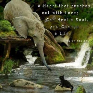 Love elephants and the quote