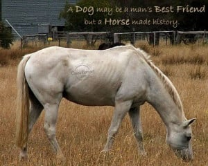 Horse Quote: A dog may be a man's best... Animal- (4)