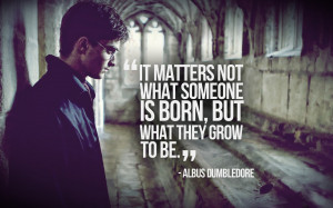 Quotes harry potter philosophy daniel radcliffe albus dumbledore ...