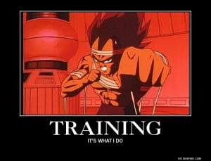 Training by Vegeta-Sensei