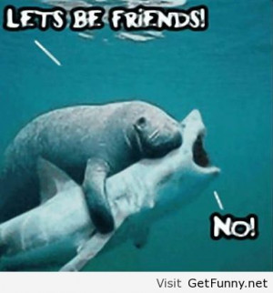 Let's just be friends - Funny Pictures, Funny Quotes, Funny Memes ...