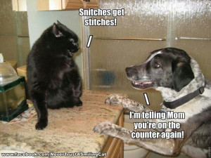 Snitches get stitches!
