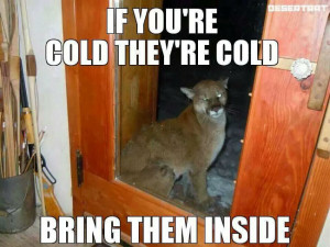 If you're cold they're cold…