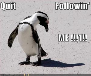 funny penguin tumblr