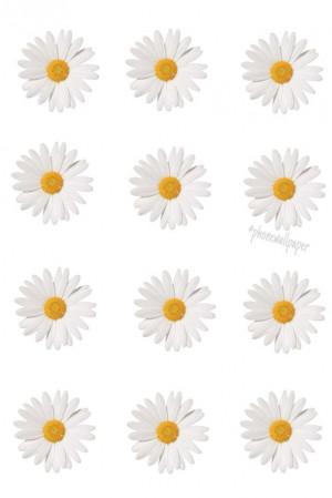 background, daisy, mine, overlay, transparent, tumblr, wallpaper ...