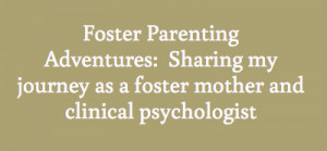 Foster Parenting Adventures:Sharing my journey as a foster mother and