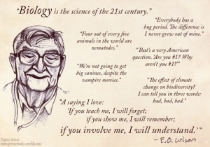 Great compilation of E.O. Wilson quotes by Virginia Greene: