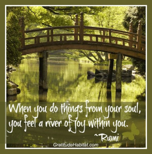 ... your Soul, you feeel a river of Joy within you .... SoulFul Joy