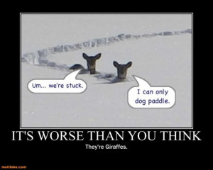 Snow Sayings and Quotes | its-worse-than-you-think-snow-funny-giraffe ...