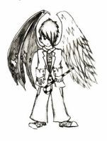 half_demon_half_angel_by_BCTLO.jpg