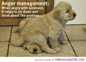 funny quotes anger pic cute animal pictures quote pics jpg