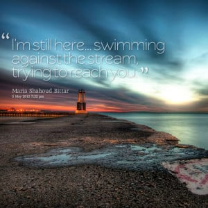 Quotes Picture: i'm still here swimming against the stream, trying to ...