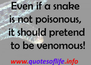 Even if a snake is not poisonous, it should pretend to be venomous!